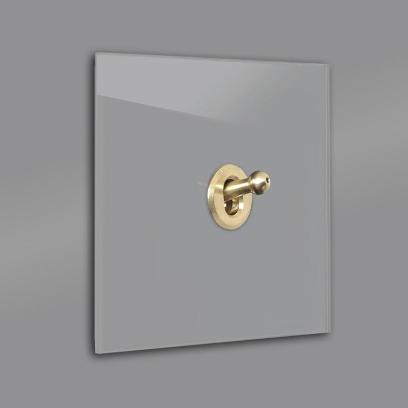 Dunkel-Grauer 1-fach moderner Retro-Lichtschalter mit Gold Kipphebel in der Farbe: MOLE`S BREATH ® von Farrow & Ball Nr.: 276
