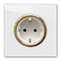 Licht-Graue 1-fach Steckdose mit Messing-Einfassung in der Farbe: AMMONITE ® von Farrow & Ball Nr.: 274